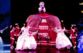 Nutcracker costumes
